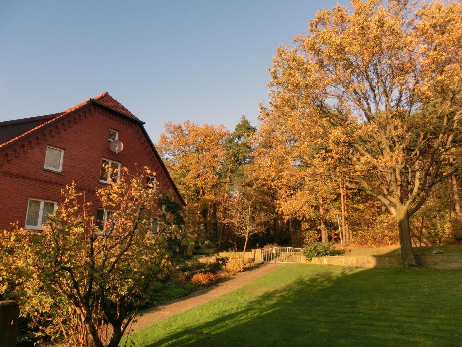 ...in der Herbstsonne