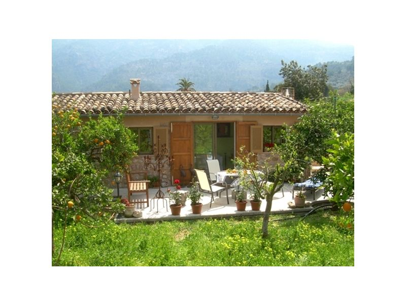 Holiday house Cheap natural stone finca in the middle of an orange grove