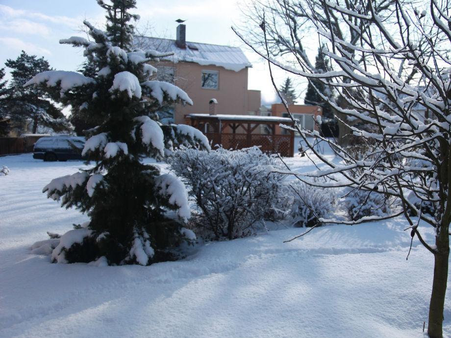 Villa Joska - großer Garten im Winter