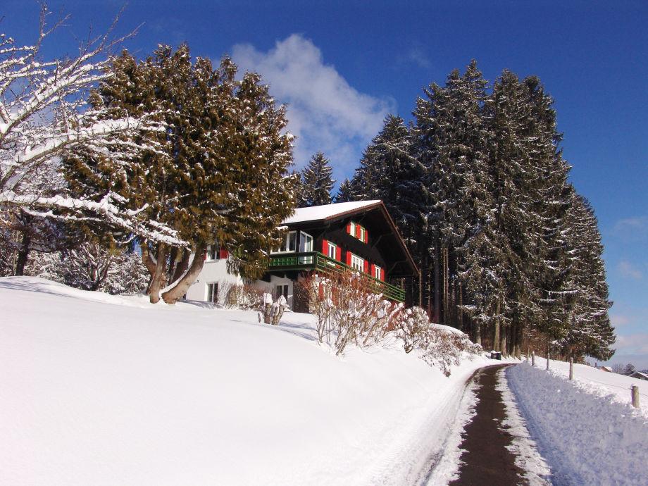 Sun & Snow | January impression