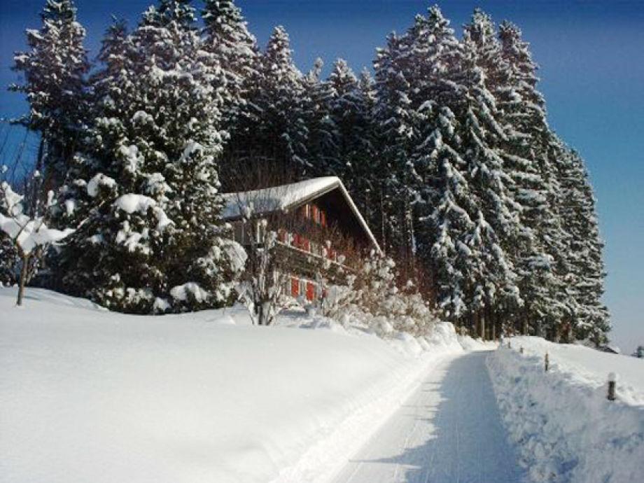 Südseite im Schnee