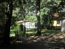 Ferienhaus Ferienhaus am Ruppiner See