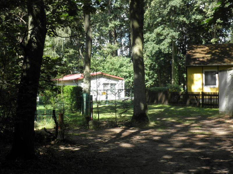 Ferienhaus am Ruppiner See