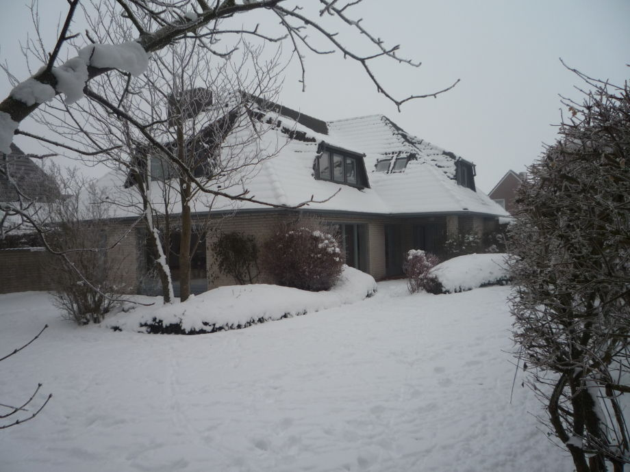 Witj Hues im Winter