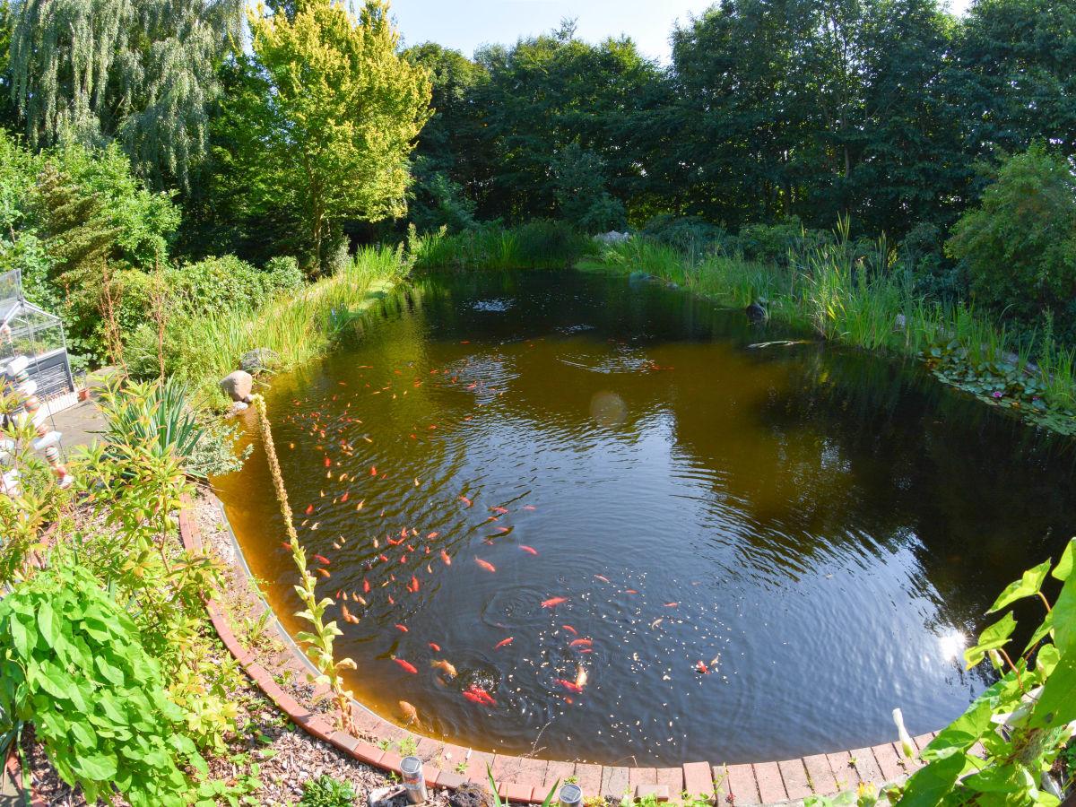 Ferienwohnung d rphof ostsee schlei frau gunda zieger for Gartenteich mit goldfischen