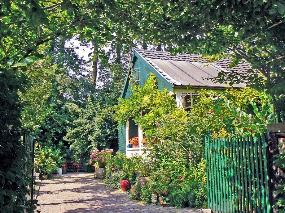 Cottage Doornendijk in summer