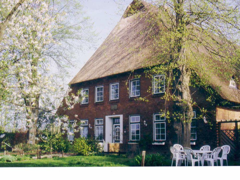 Vorderfront und Gästegarten im Frühling