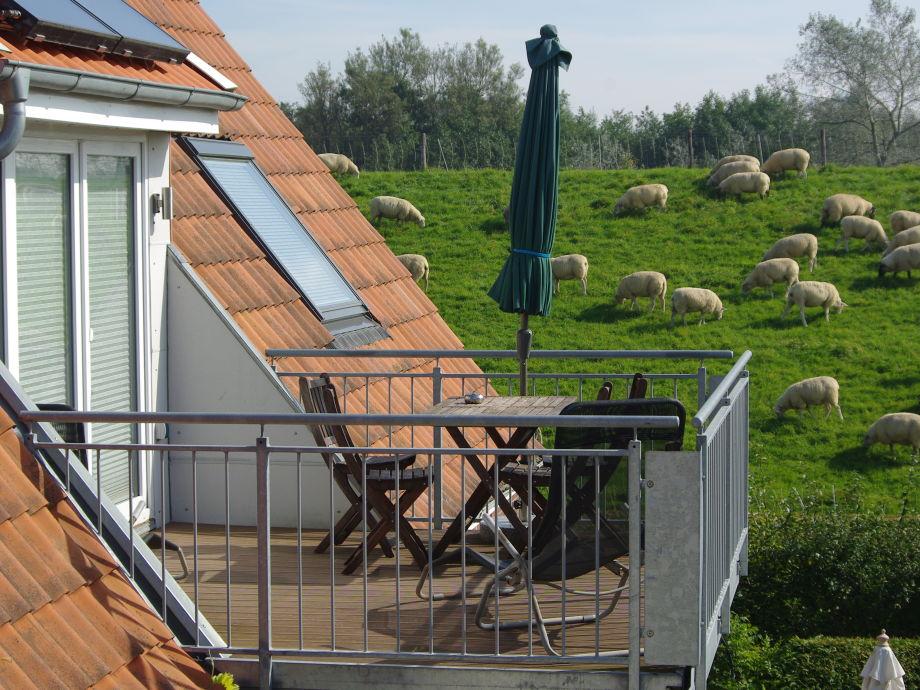 Sonniger Balkon mit Blick auf den Deich