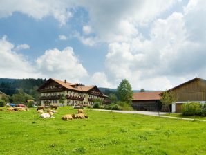 Bauernhof mit Ferienwohnung Typ B