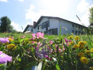 Holiday cottage Barcarola