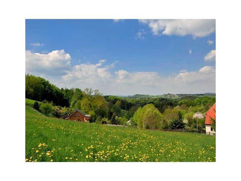 Ferienwohnung 3 Waldhof