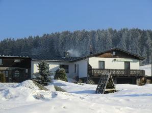Ferienhaus Steiniger