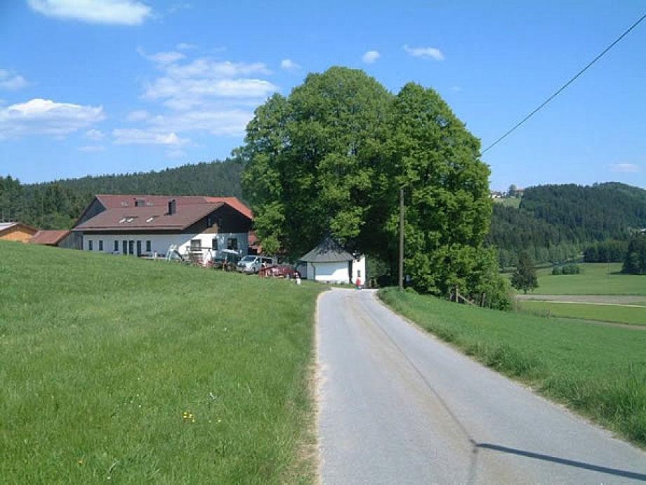 Wilkommen auf dem Ferienbauernhof Maderhof
