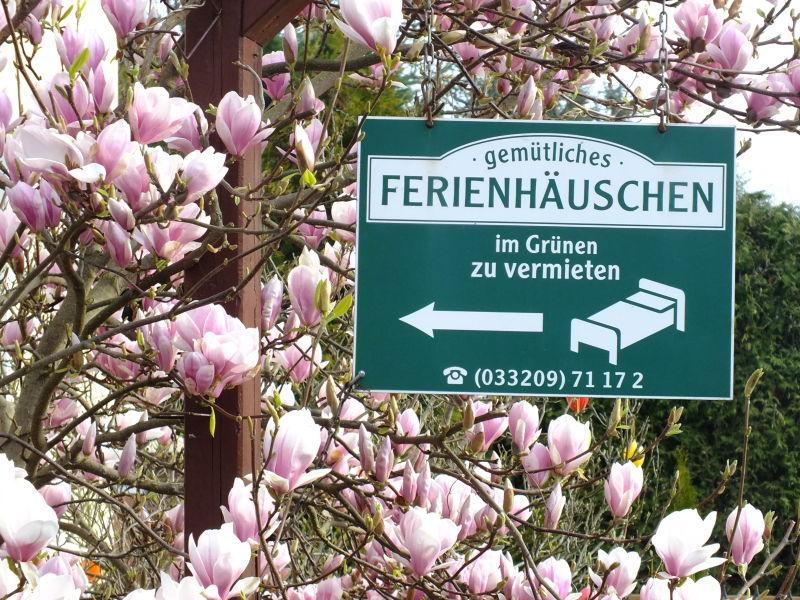 """Ferienhaus Ahrens """"Raus aufs Land"""""""