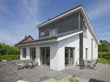 Ferienhaus Schwansee