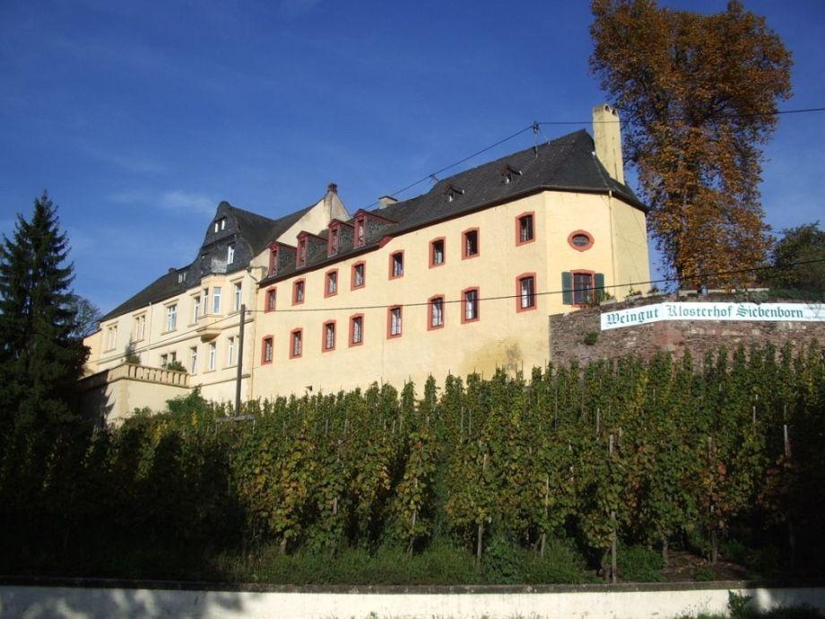 "Holidayapartments at ""Klosterhof Siebenborn"""