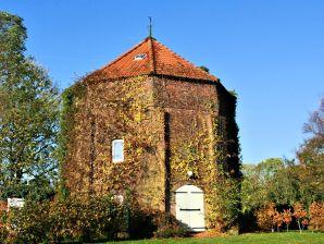 Ferienhaus Schoonorther Mühle