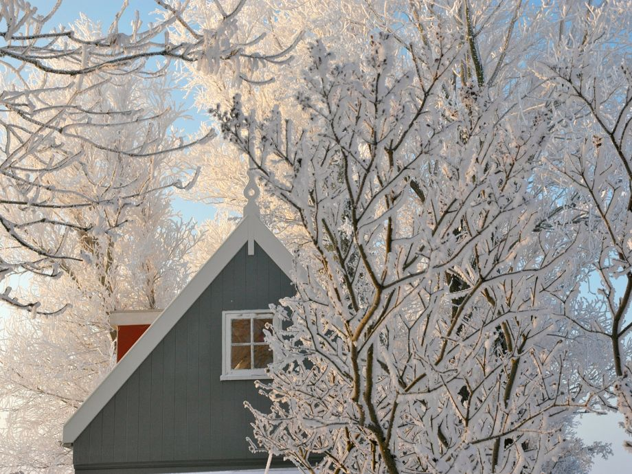 Amsterdam Country Cottage winter