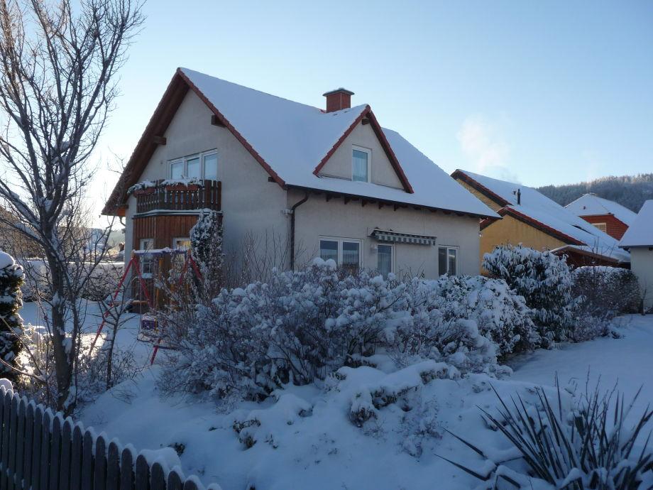 Winter Januar 2016