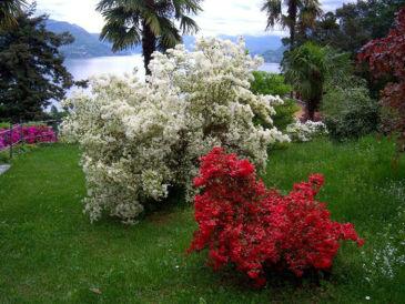 Ferienwohnung Villa Antonietta