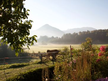 Organic farm Biohof Schwaig Zaubernuss