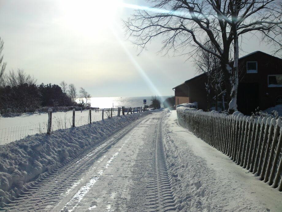 Traumhaft im Winter...Weg zum Ostseestrand