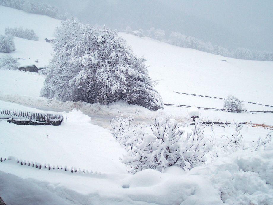 Schneefall auf dem Stampferhof