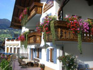 Ferienwohnung 2 im Haus Platzis
