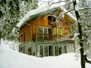 Holiday house in idyllic woods at Faaker Lake