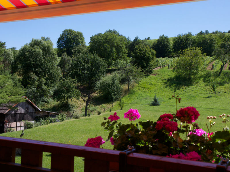 Holiday apartment Résidence Froehn