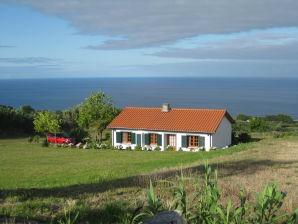 Ferienhaus Captain's Cottage