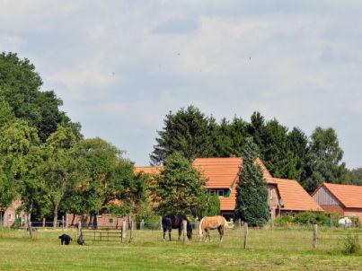 Landidyll Wienbarger Hof