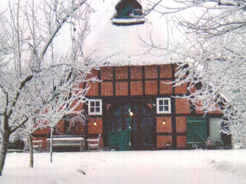 Ferienhaus Urlaub unterm Reetdach - Haus Nr. 2