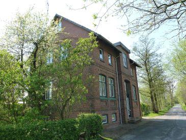 Ferienhaus Kapitänshaus Kollmar