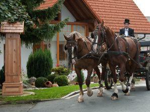 Ferienwohnung Spatzennest - Bauernhof Schwalbenhof