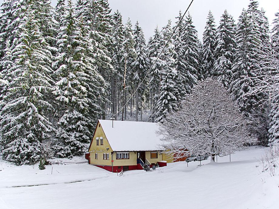Rappenloch im Winter
