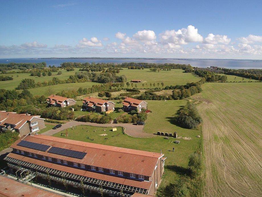 Luftbild - 800 m zur Ostsee