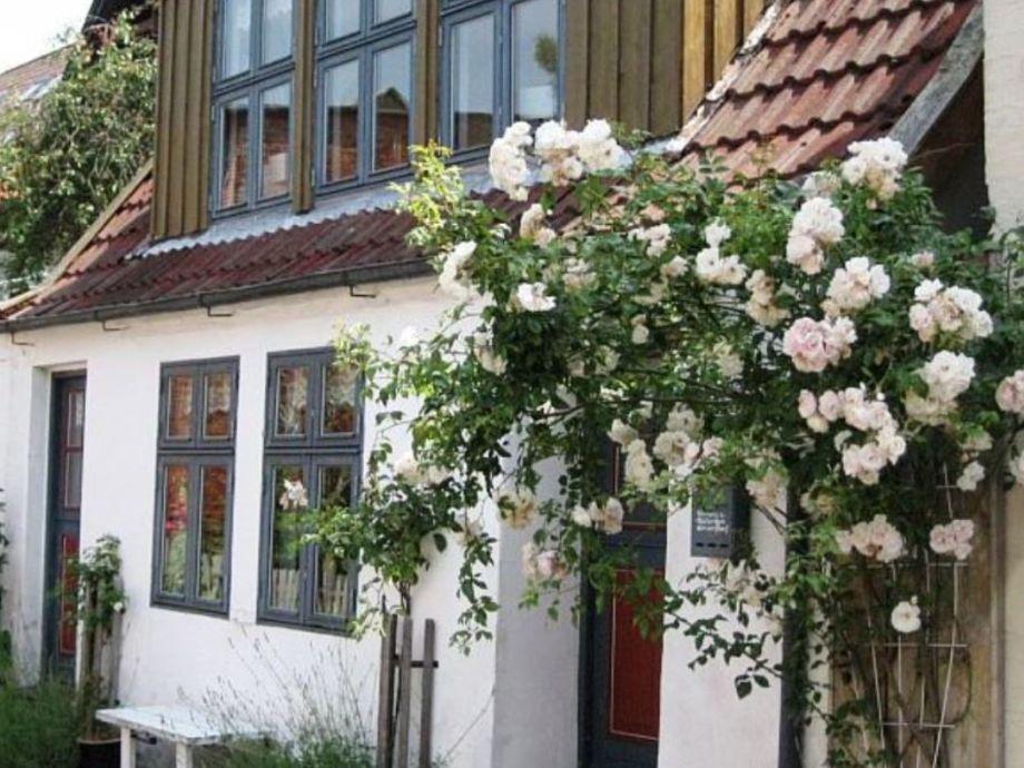 Romantisches Ferienhäuschen auf Eiderstedt 2-3 Pers.
