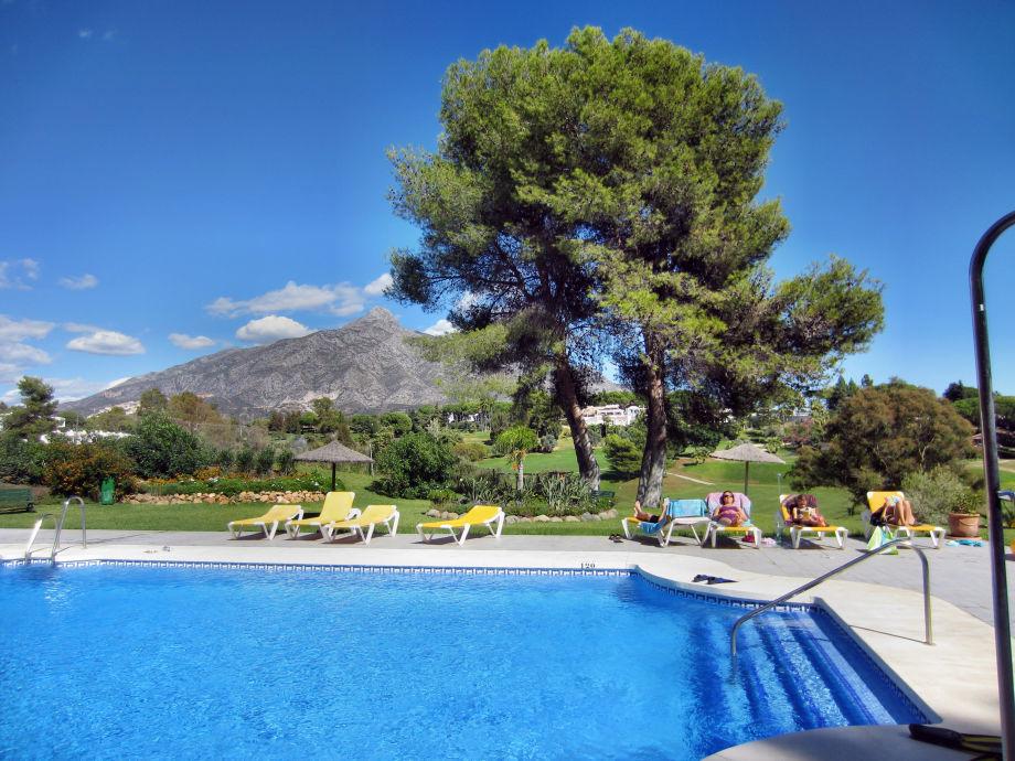 Der große Swimmingpool mit ausreichend Sonnenliegen