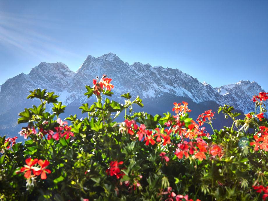 Genießen Sie die Aussicht auf deutschlands höchtem Berg