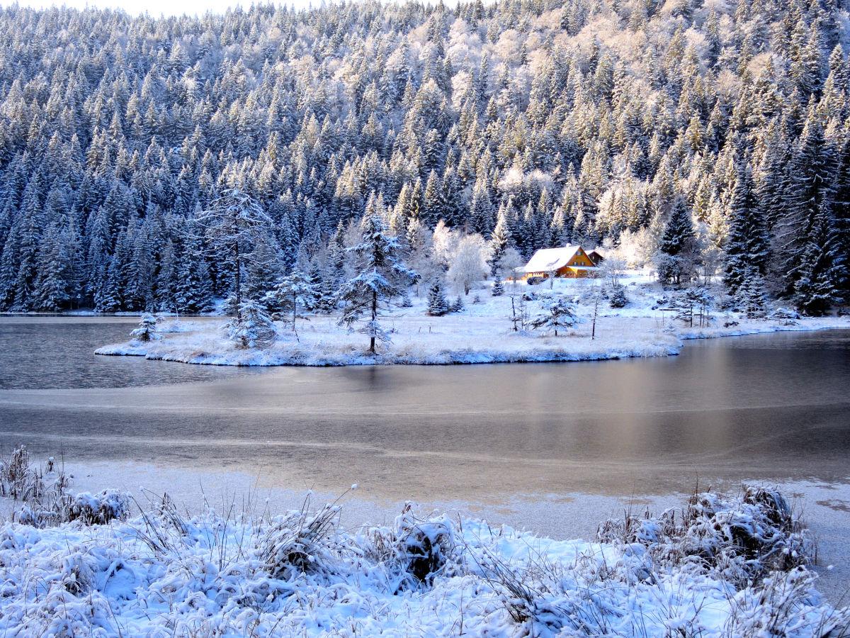 Wohnung Streichen Im Winter : Ferienwohnung Zwercheck im Haus am Bramersbach, Lamer Winkel, Lohberg