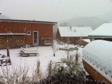 Ferienhaus Heides Hütte 5