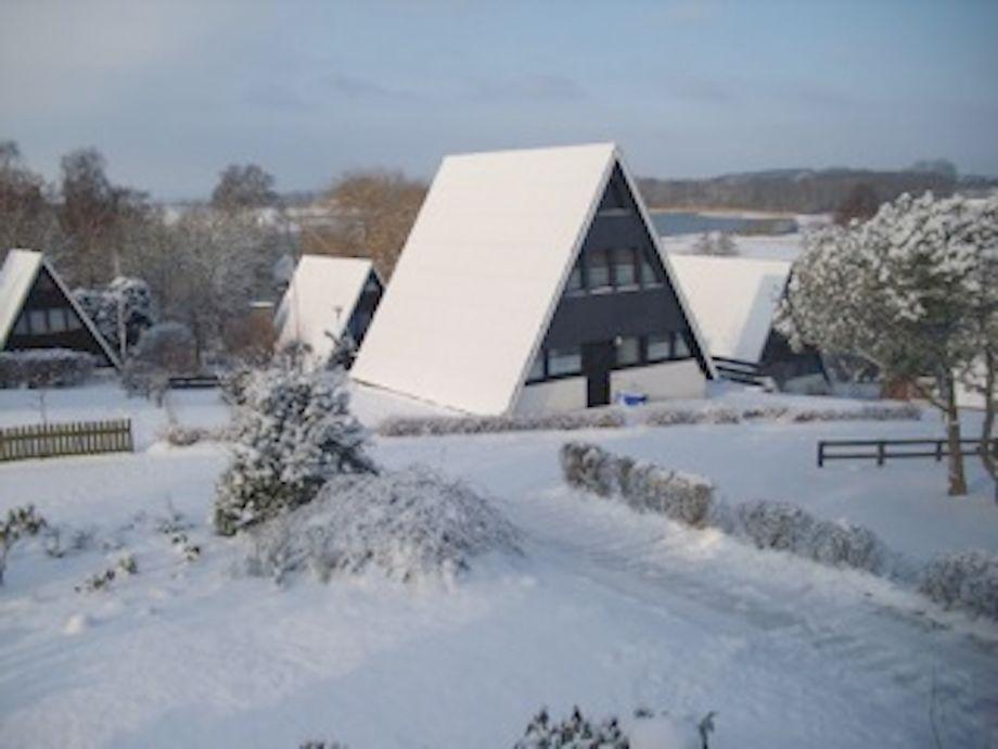 Brodersby-Burg im Winter
