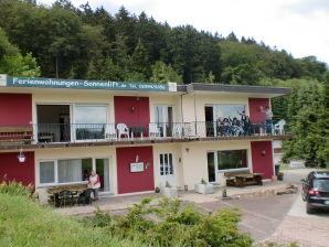 Ferienwohnung Haus Sonnenlift Willingen  Wohnung B mit Panoramausblick