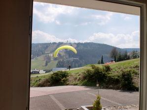 Ferienwohnung C im Haus Sonnenlift Willingen mit Panoramaaussicht