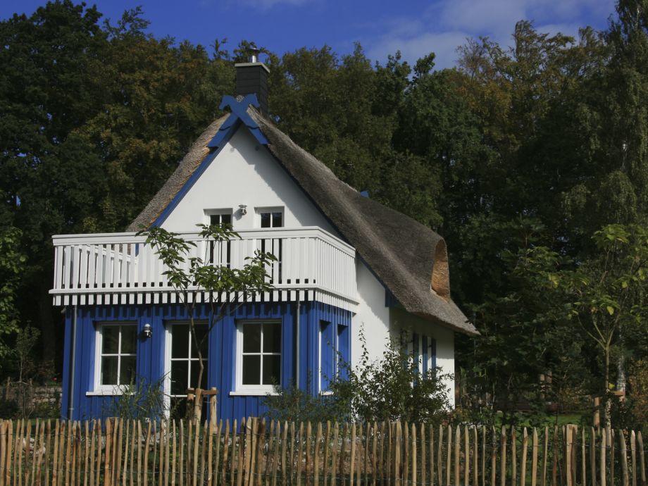 Haus Darßsünn Rückansicht -inzwischen uneinsichtig grün