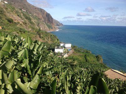 Quinta Golfinho - Casa Frangipani