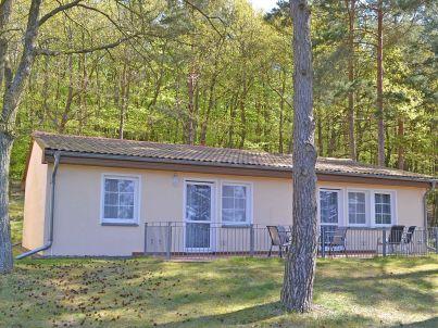 Waldsiedlung - Waldhaus 3