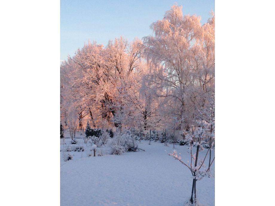 Tief verschneiter Garten