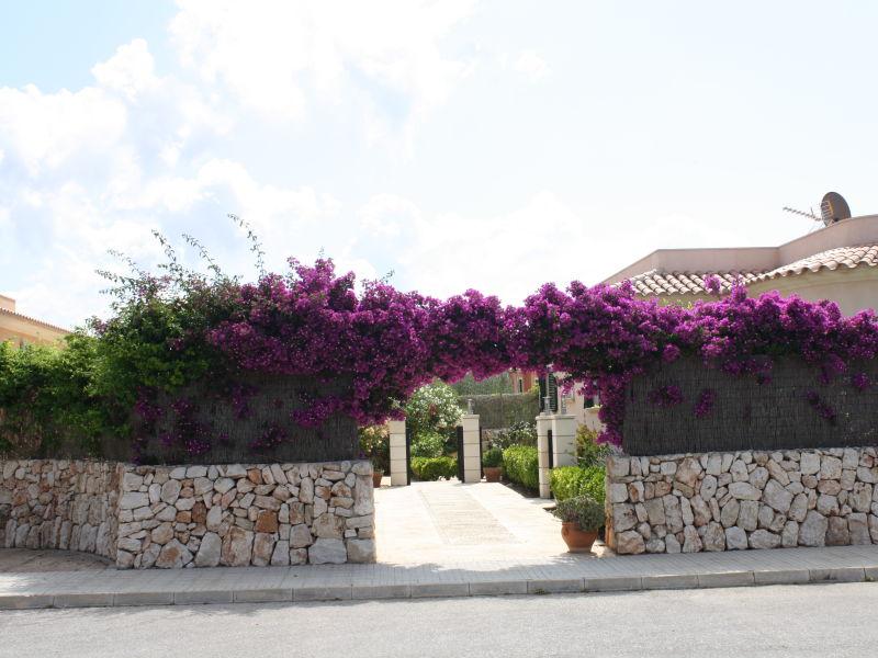 Holiday house Casa Olivo